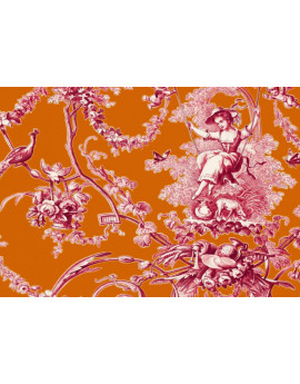 Ludivine Rose Fond Orange