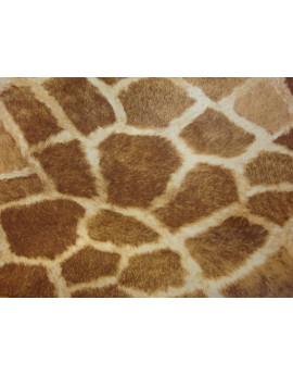 Tissu Peau Bête Jirafa